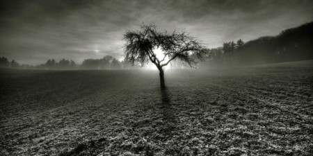 image of a dark field real life ghost sightings